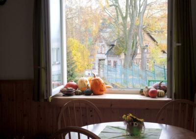 Výhled z kuchyně